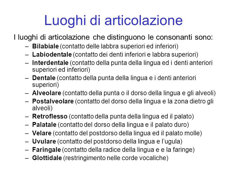 Luoghi di articolazione I luoghi di articolazione che distinguono le consonanti sono: –Bilabiale (contatto delle labbra superiori ed inferiori) –Labio