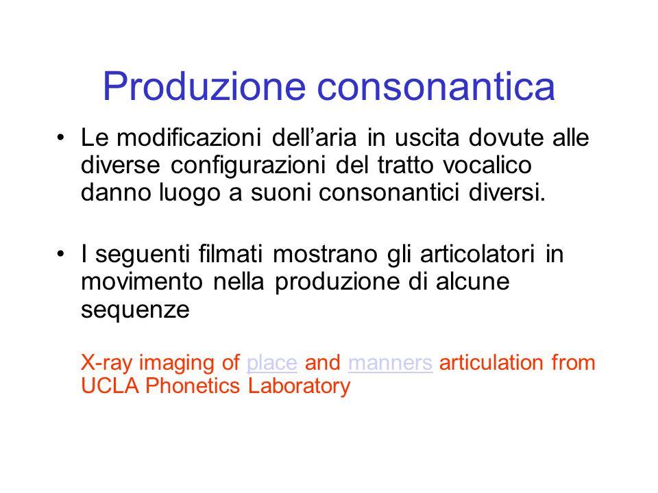 Produzione consonantica Le modificazioni dellaria in uscita dovute alle diverse configurazioni del tratto vocalico danno luogo a suoni consonantici di