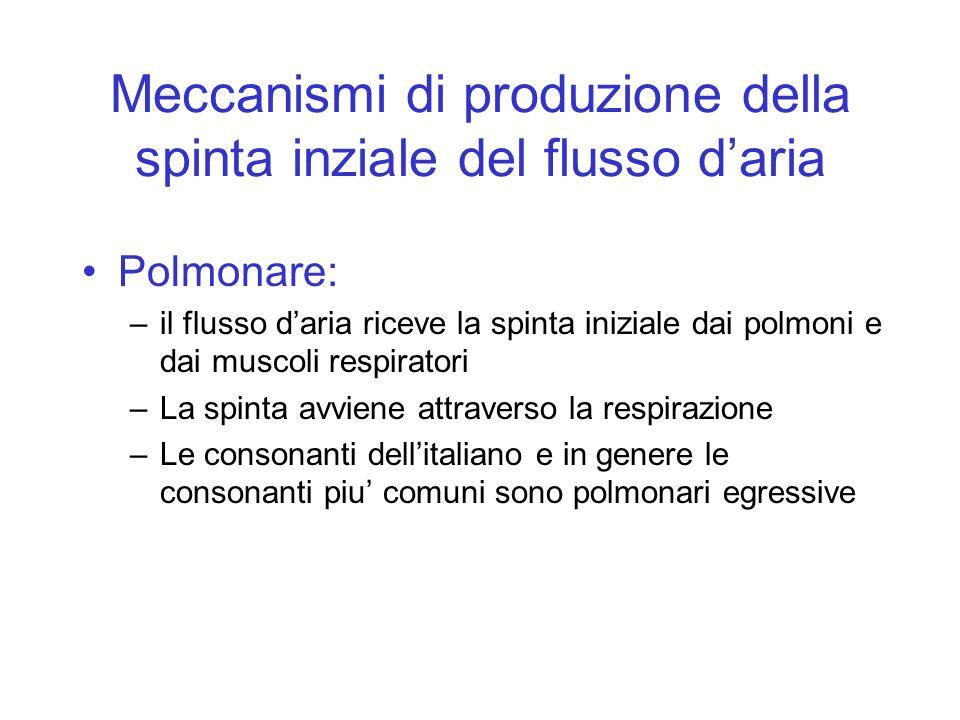 Meccanismi di produzione della spinta inziale del flusso daria Polmonare: –il flusso daria riceve la spinta iniziale dai polmoni e dai muscoli respira