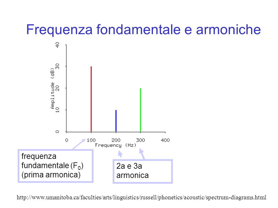 Frequenza fondamentale e armoniche http://www.umanitoba.ca/faculties/arts/linguistics/russell/phonetics/acoustic/spectrum-diagrams.html frequenza fund