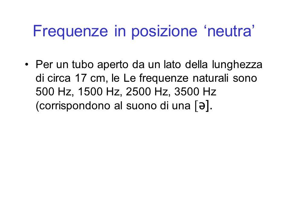 Frequenze in posizione neutra Per un tubo aperto da un lato della lunghezza di circa 17 cm, le Le frequenze naturali sono 500 Hz, 1500 Hz, 2500 Hz, 35