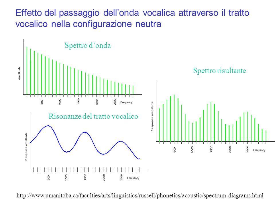 Effetto del passaggio dellonda vocalica attraverso il tratto vocalico nella configurazione neutra http://www.umanitoba.ca/faculties/arts/linguistics/r