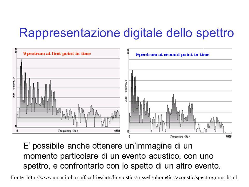 Rappresentazione digitale dello spettro E possibile anche ottenere unimmagine di un momento particolare di un evento acustico, con uno spettro, e conf