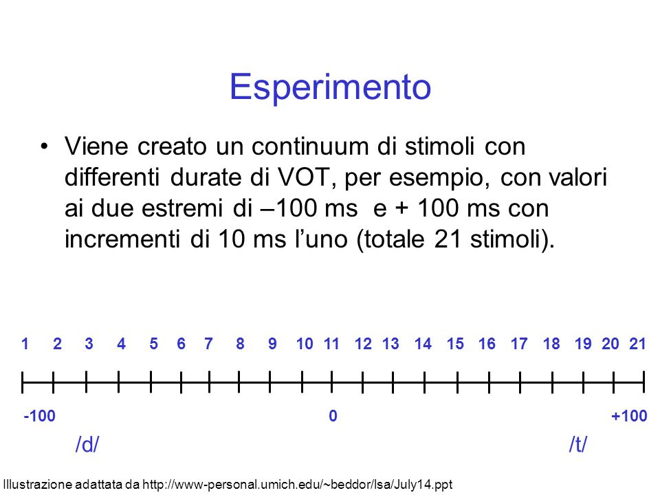 Produzione di VOT in Inglese 2 categorie distinte variabile Fonte: lisa pear at lhttp://www.ling.umd.edu/llsp/LING240/