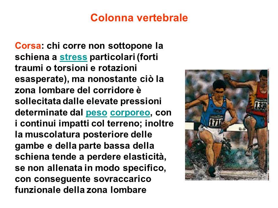 Colonna vertebrale Corsa: chi corre non sottopone la schiena a stress particolari (forti traumi o torsioni e rotazioni esasperate), ma nonostante ciò