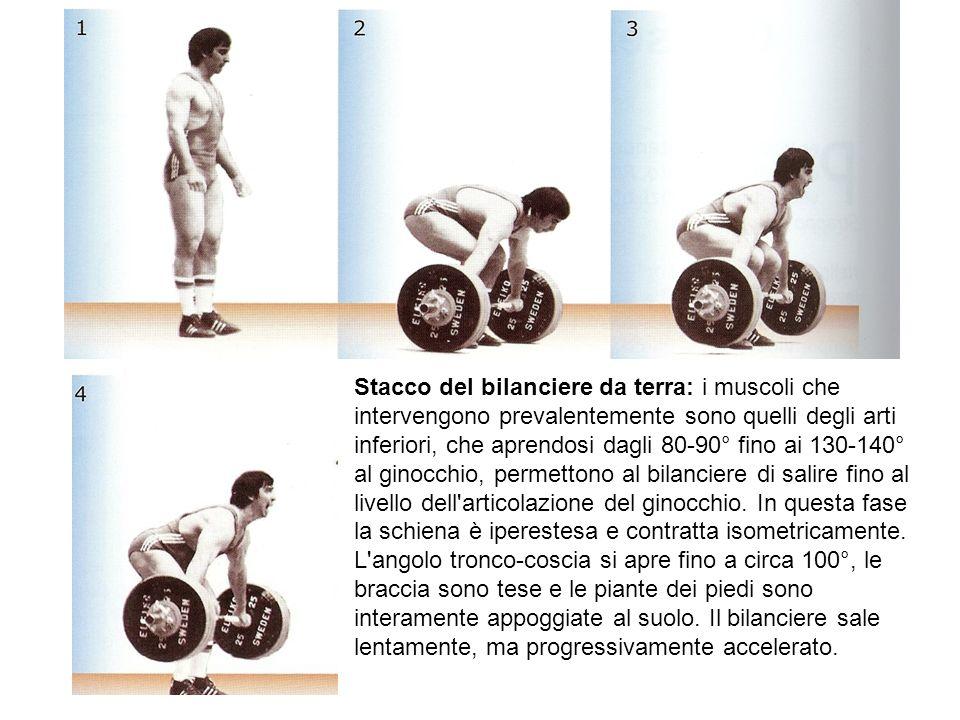 Stacco del bilanciere da terra: i muscoli che intervengono prevalentemente sono quelli degli arti inferiori, che aprendosi dagli 80-90° fino ai 130-14