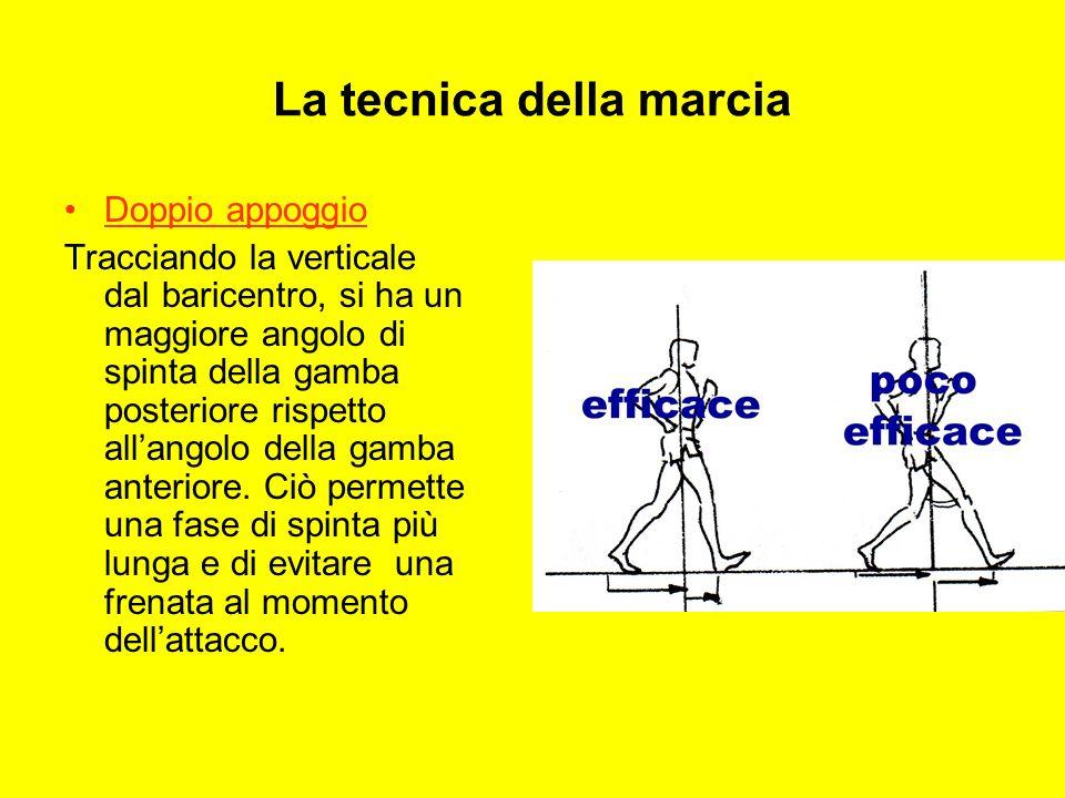 La tecnica della marcia Doppio appoggio Tracciando la verticale dal baricentro, si ha un maggiore angolo di spinta della gamba posteriore rispetto allangolo della gamba anteriore.