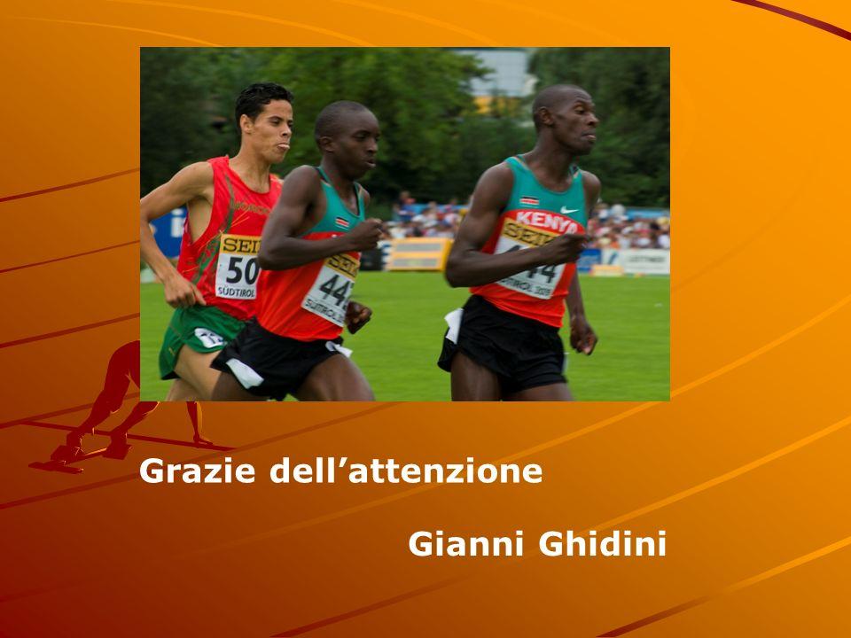 Grazie dellattenzione Gianni Ghidini