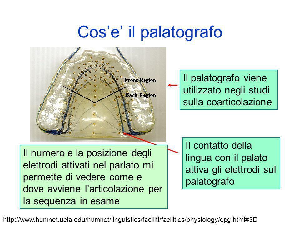 Cose il palatografo Il palatografo viene utilizzato negli studi sulla coarticolazione Il contatto della lingua con il palato attiva gli elettrodi sul