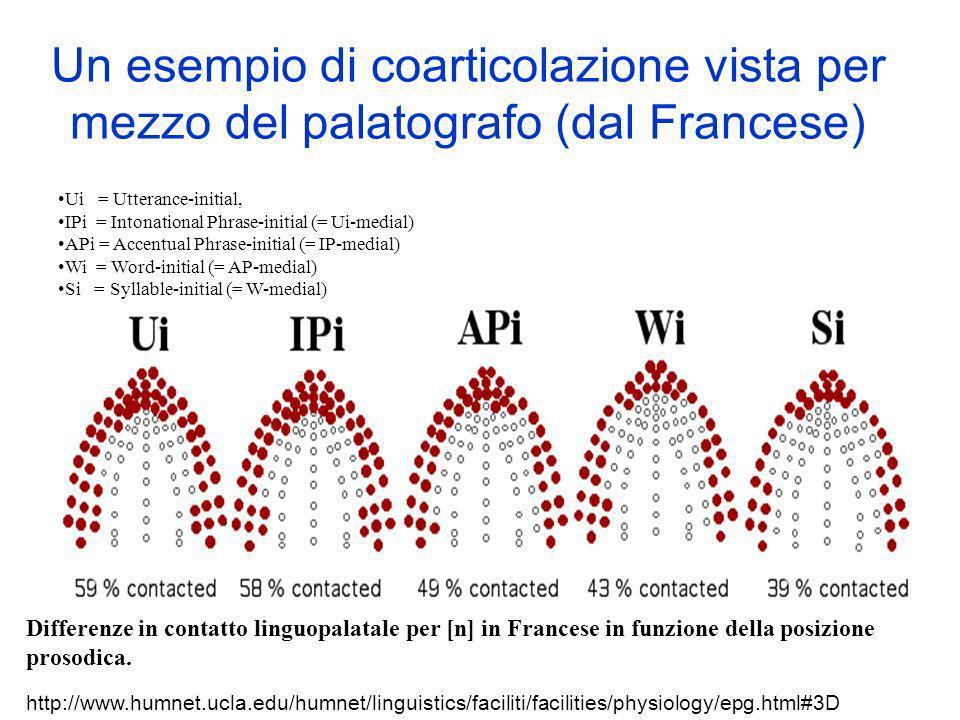 Un esempio di coarticolazione vista per mezzo del palatografo (dal Francese) http://www.humnet.ucla.edu/humnet/linguistics/faciliti/facilities/physiol