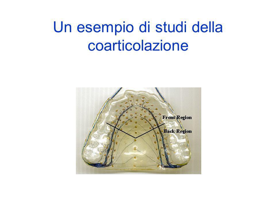 Un esempio di studi della coarticolazione
