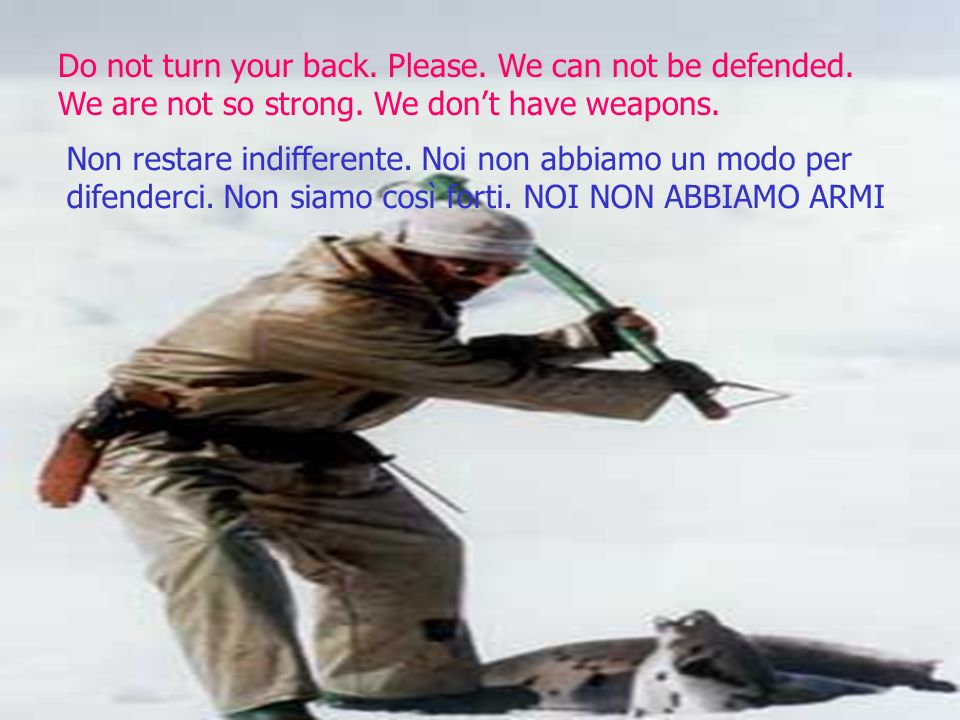 Do not turn your back. Please. We can not be defended.