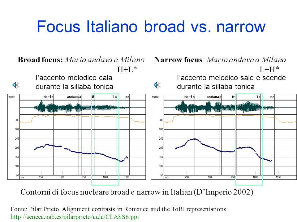 Tipologia del focus nelle lingue romanze (secondo Hualde 2003) –A - Prenuclear accent –B - Nuclear broad focus –C - Nuclear narrow focus Fonte: Pilar