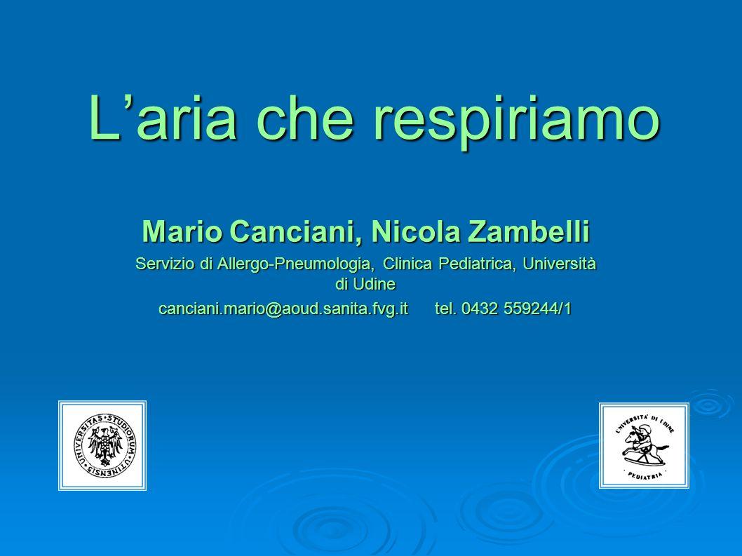 Laria che respiriamo Mario Canciani, Nicola Zambelli Servizio di Allergo-Pneumologia, Clinica Pediatrica, Università di Udine canciani.mario@aoud.sani