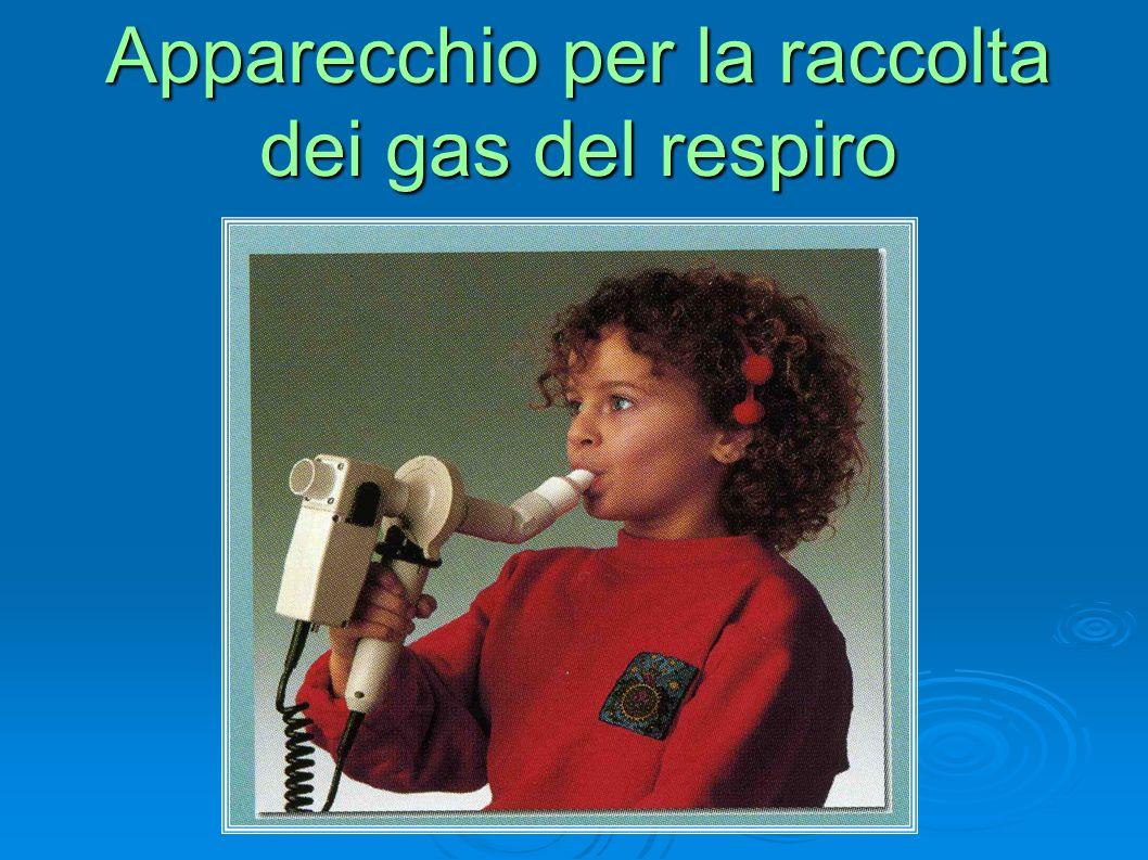 Apparecchio per la raccolta dei gas del respiro