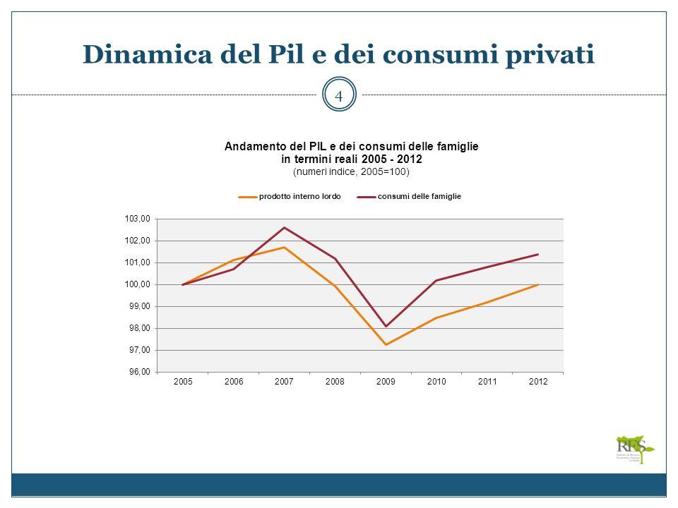 Dinamica del Pil e dei consumi privati 4
