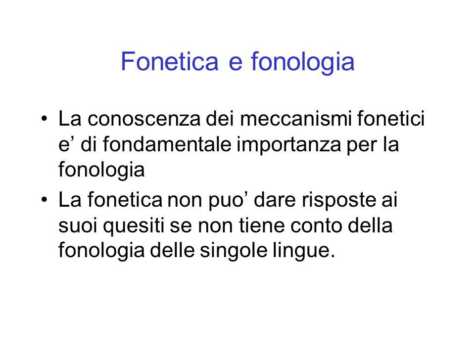 La conoscenza dei meccanismi fonetici e di fondamentale importanza per la fonologia La fonetica non puo dare risposte ai suoi quesiti se non tiene con