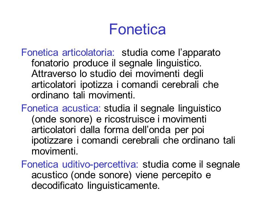 Fonetica articolatoria: studia come lapparato fonatorio produce il segnale linguistico. Attraverso lo studio dei movimenti degli articolatori ipotizza