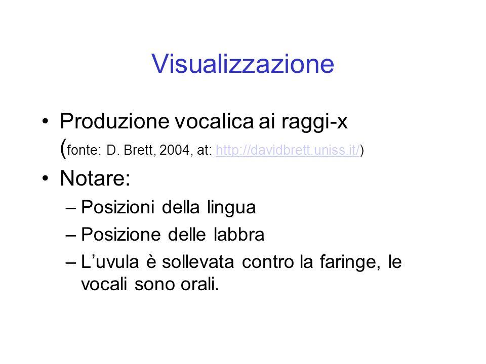 Produzione vocalica ai raggi-x ( fonte: D. Brett, 2004, at: http://davidbrett.uniss.it/)http://davidbrett.uniss.it/ Notare: –Posizioni della lingua –P