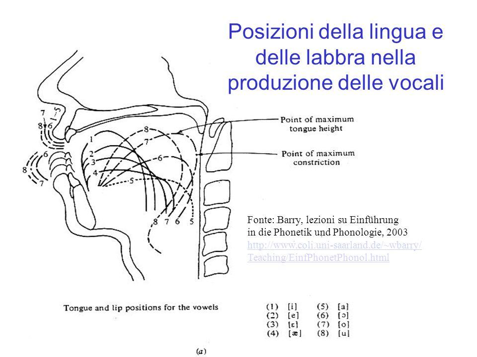 Posizioni della lingua e delle labbra nella produzione delle vocali Fonte: Barry, lezioni su Einführung in die Phonetik und Phonologie, 2003 http://ww