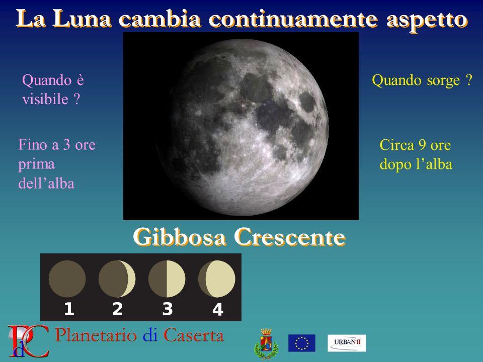 La Luna cambia continuamente aspetto Gibbosa Crescente Quando è visibile ? Quando sorge ? Circa 9 ore dopo lalba Fino a 3 ore prima dellalba