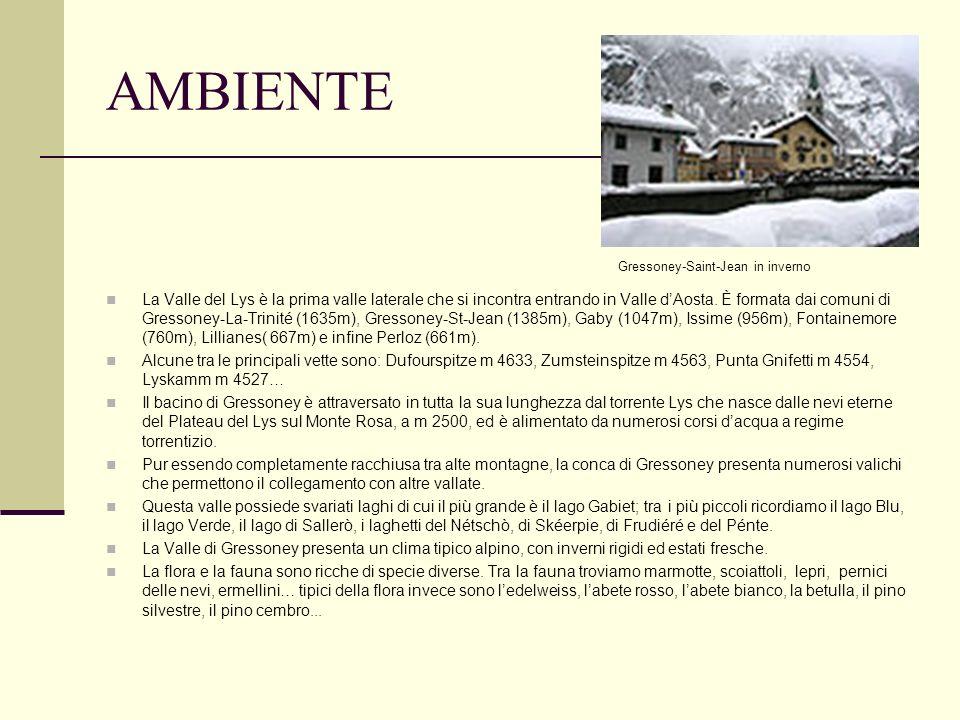 AMBIENTE La Valle del Lys è la prima valle laterale che si incontra entrando in Valle dAosta. È formata dai comuni di Gressoney-La-Trinité (1635m), Gr