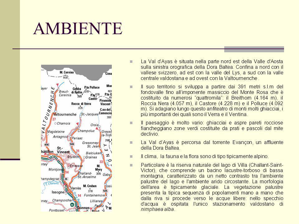 AMBIENTE La Val dAyas è situata nella parte nord est della Valle d Aosta sulla sinistra orografica della Dora Baltea.