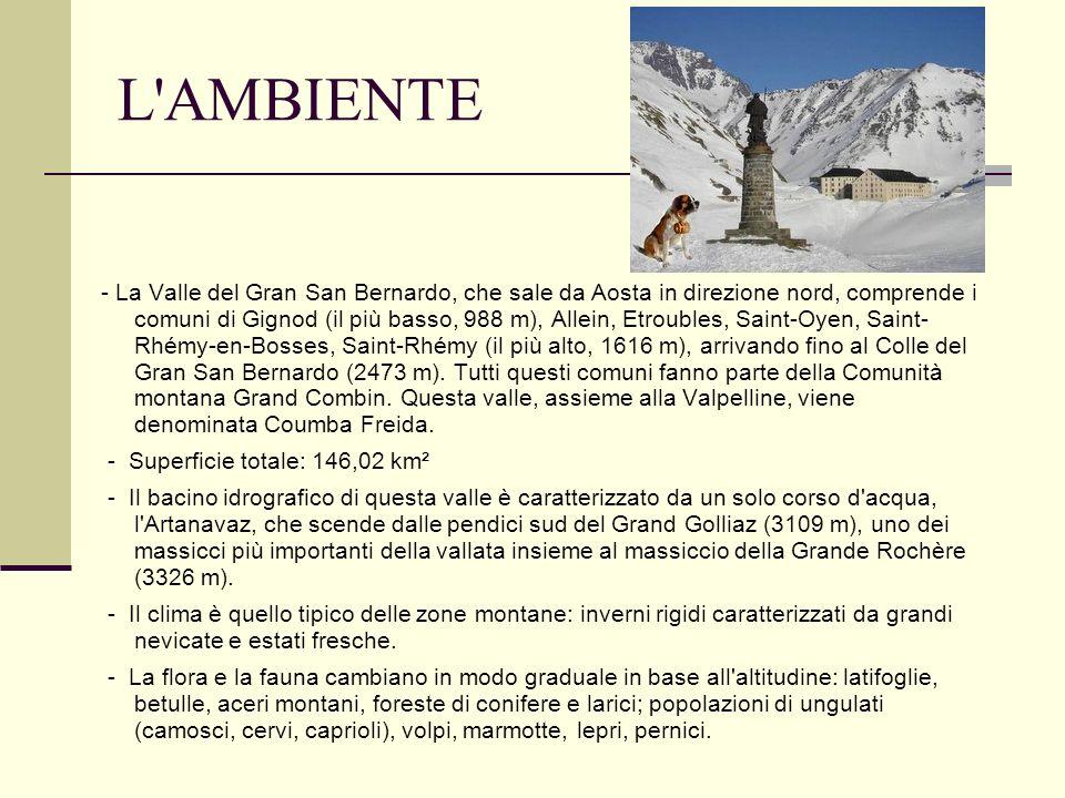 L'AMBIENTE - La Valle del Gran San Bernardo, che sale da Aosta in direzione nord, comprende i comuni di Gignod (il più basso, 988 m), Allein, Etrouble
