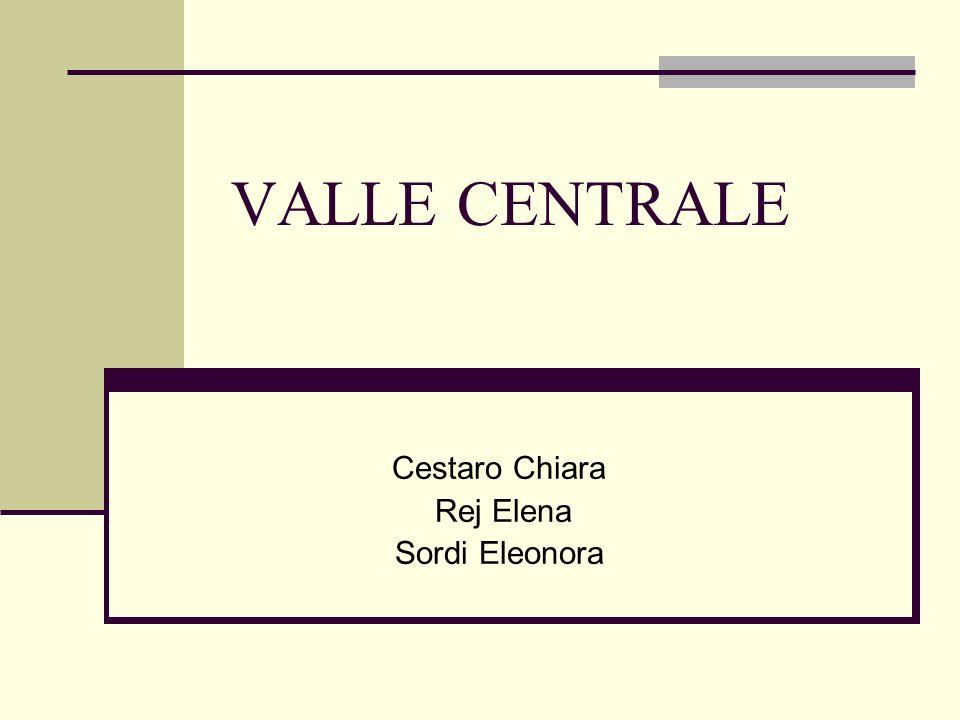 AMBIENTE La Valle Centrale attraversa la regione per una lunghezza di circa 77 km, seguendo il corso della Dora Baltea, da Morgex (920 m) a Pont Saint Martin (312 m) Clima continentale (temperatura media max di luglio 26,7 °C; temperatura media min di gennaio -3,2 °C), precipitazioni concentrate in autunno e in primavera a causa delle barriere montuose Vegetazione differenziata su due versanti: a solatìo (adret) roverella, pino silvestre, vigne e, in passato, cereali a bacìo (envers) abete rosso, larice Ambiente fortemente antropizzato da interventi di carattere agricolo (terrazzamenti, disboscamento, regimazione dei corsi dacqua), industriale e urbano