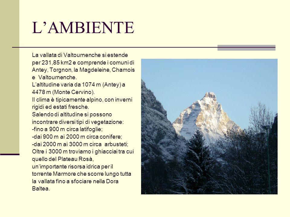 LAMBIENTE La vallata di Valtournenche si estende per 231,85 km2 e comprende i comuni di Antey, Torgnon, la Magdeleine, Chamois e Valtournenche. Laltit