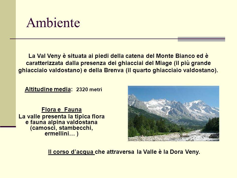 Ambiente La Val Veny è situata ai piedi della catena del Monte Bianco ed è caratterizzata dalla presenza dei ghiacciai del Miage (il più grande ghiacciaio valdostano) e della Brenva (il quarto ghiacciaio valdostano).