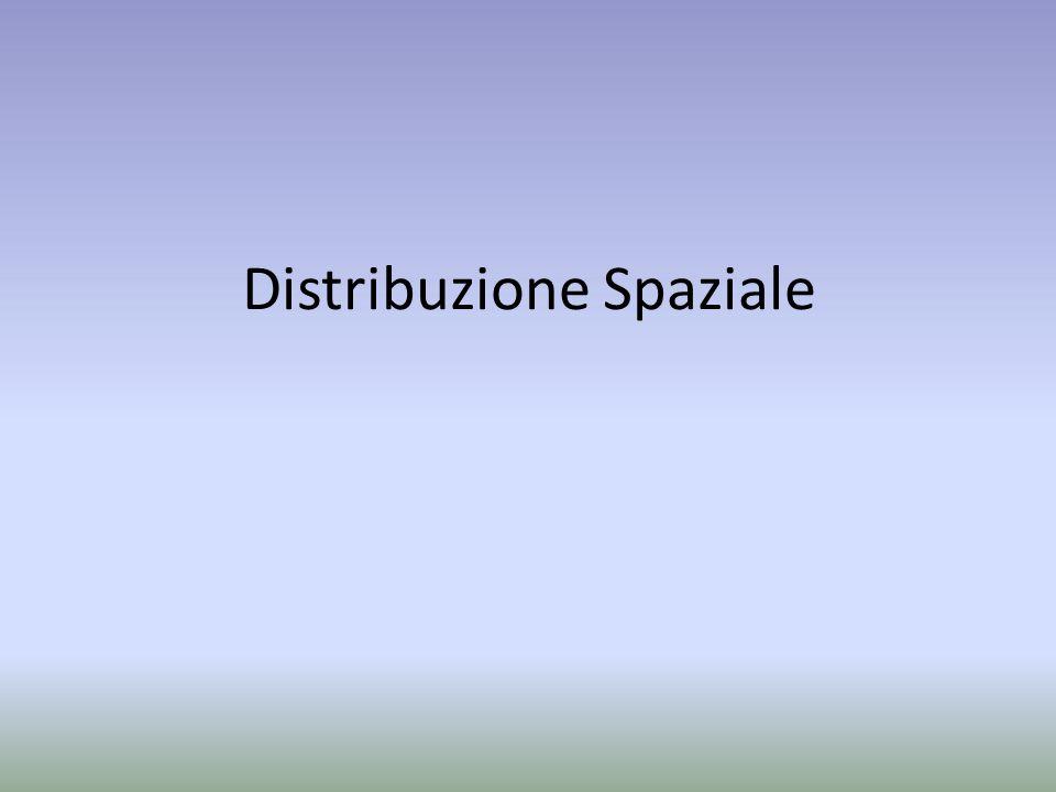 Distribuzione Spaziale