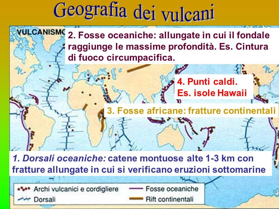 1. Dorsali oceaniche: catene montuose alte 1-3 km con fratture allungate in cui si verificano eruzioni sottomarine 2. Fosse oceaniche: allungate in cu