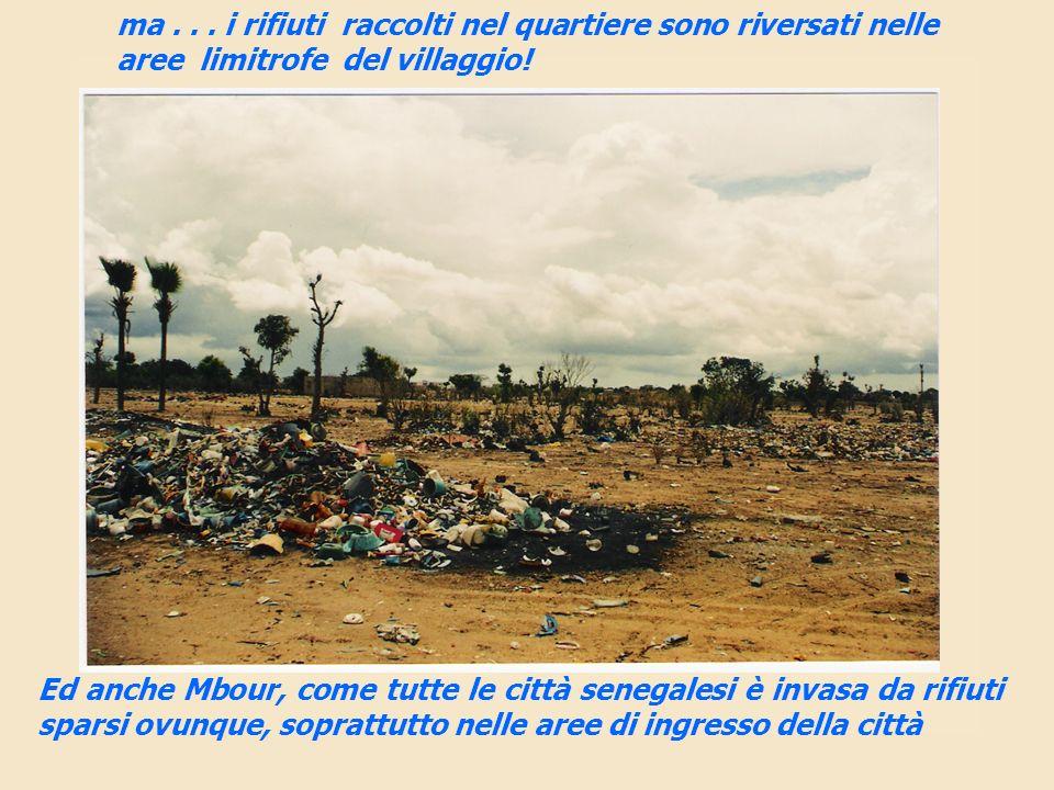 ma... i rifiuti raccolti nel quartiere sono riversati nelle aree limitrofe del villaggio! Ed anche Mbour, come tutte le città senegalesi è invasa da r