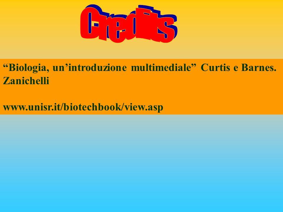 Biologia, unintroduzione multimediale Curtis e Barnes. Zanichelli www.unisr.it/biotechbook/view.asp