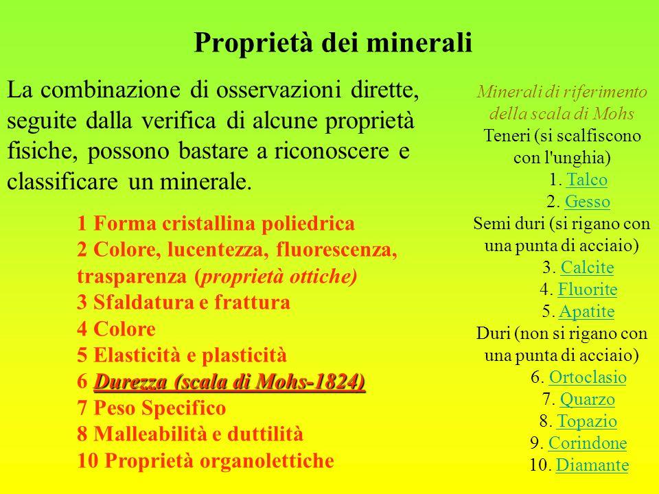 -Le argille rappresentano il termine più fine; le dimensioni dei clasti sono al di sotto di 0,062 mm.