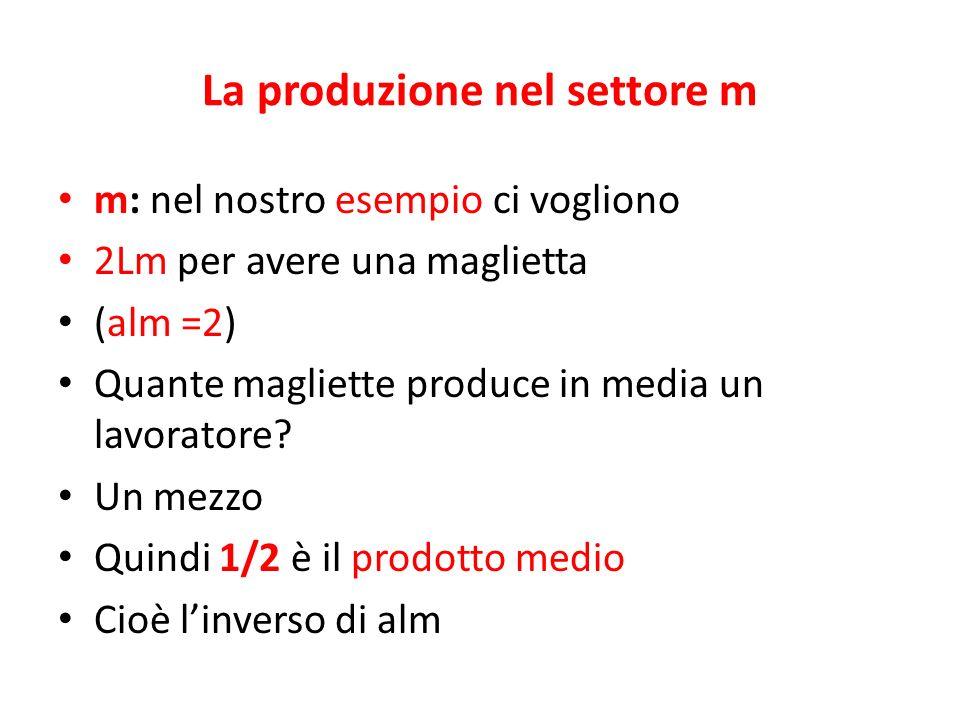 La produzione nel settore m m: nel nostro esempio ci vogliono 2Lm per avere una maglietta (alm =2) Quante magliette produce in media un lavoratore? Un