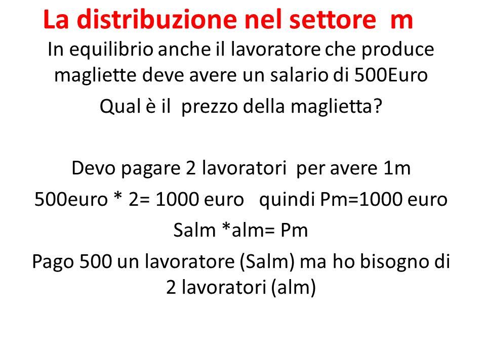 La distribuzione nel settore m In equilibrio anche il lavoratore che produce magliette deve avere un salario di 500Euro Qual è il prezzo della maglietta.