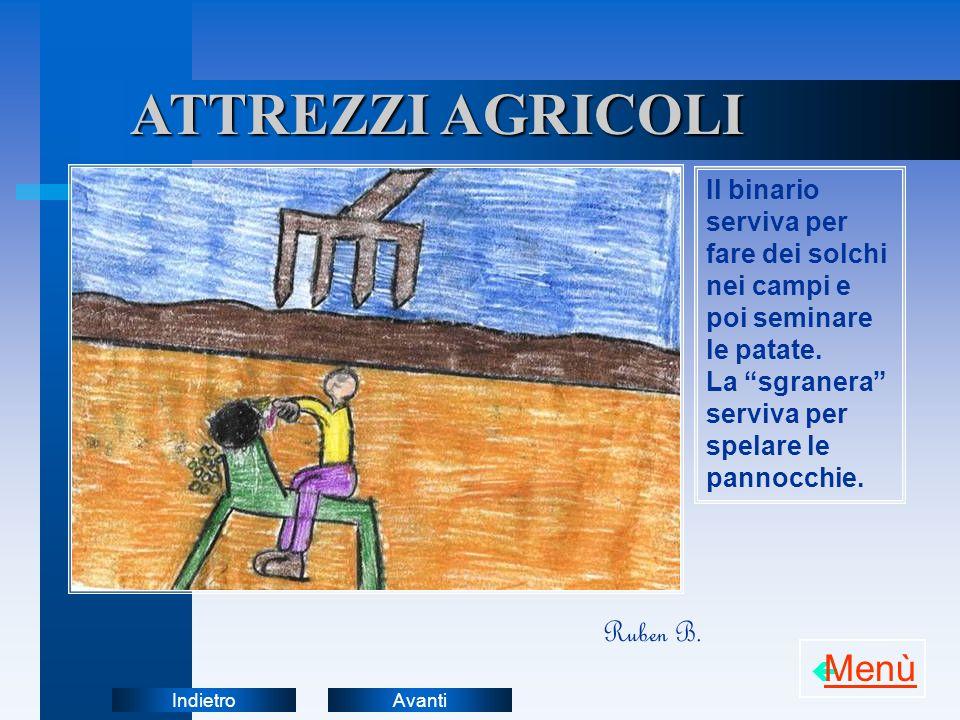 AvantiIndietro ATTREZZI AGRICOLI Il binario serviva per fare dei solchi nei campi e poi seminare le patate. La sgranera serviva per spelare le pannocc