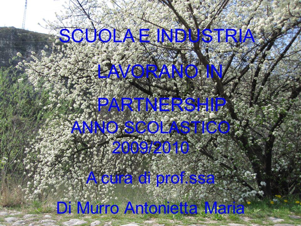 SCUOLA E INDUSTRIA ANNO SCOLASTICO 2009/2010 A cura di prof.ssa Di Murro Antonietta Maria LAVORANO IN PARTNERSHIP