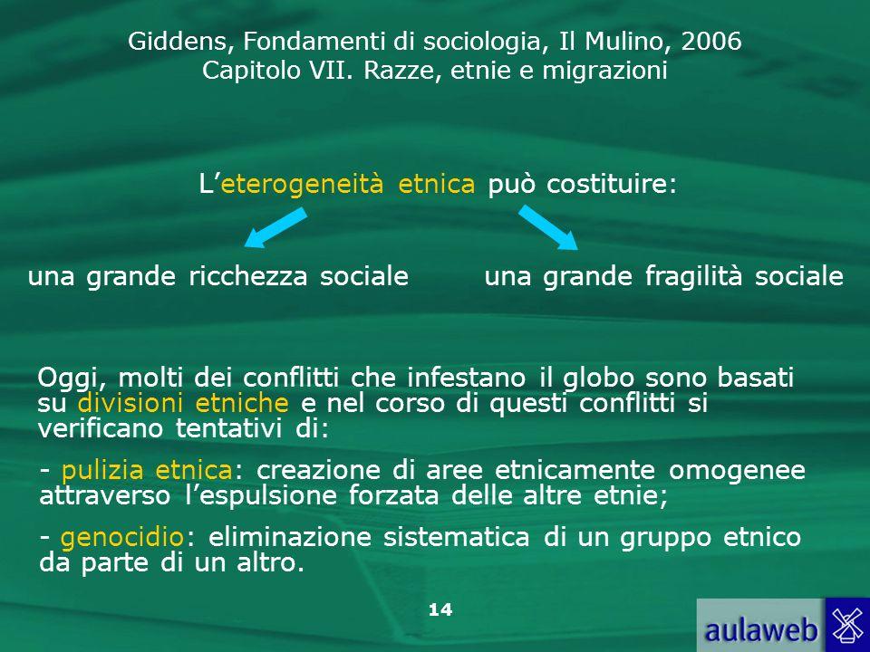 Giddens, Fondamenti di sociologia, Il Mulino, 2006 Capitolo VII. Razze, etnie e migrazioni 14 Leterogeneità etnica può costituire: una grande ricchezz