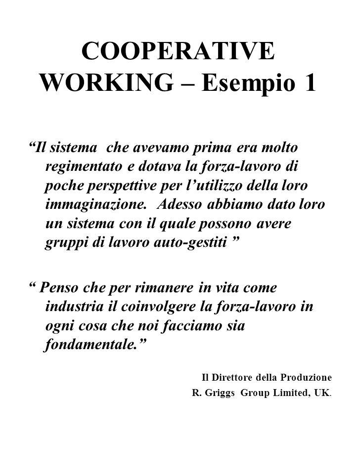 COOPERATIVE WORKING – Esempio 1 Il sistema che avevamo prima era molto regimentato e dotava la forza-lavoro di poche perspettive per lutilizzo della loro immaginazione.