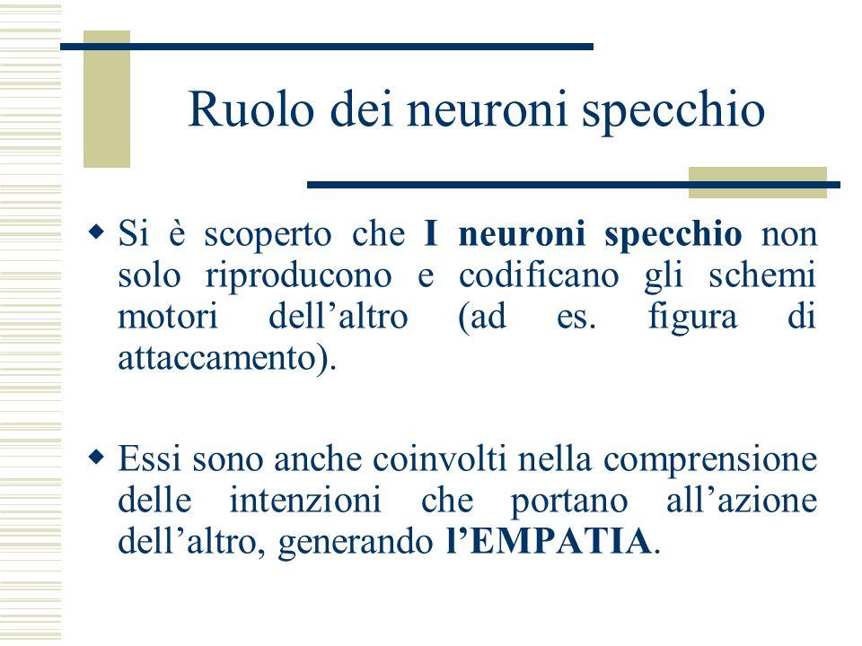 Ruolo dei neuroni specchio Si è scoperto che I neuroni specchio non solo riproducono e codificano gli schemi motori dellaltro (ad es. figura di attacc