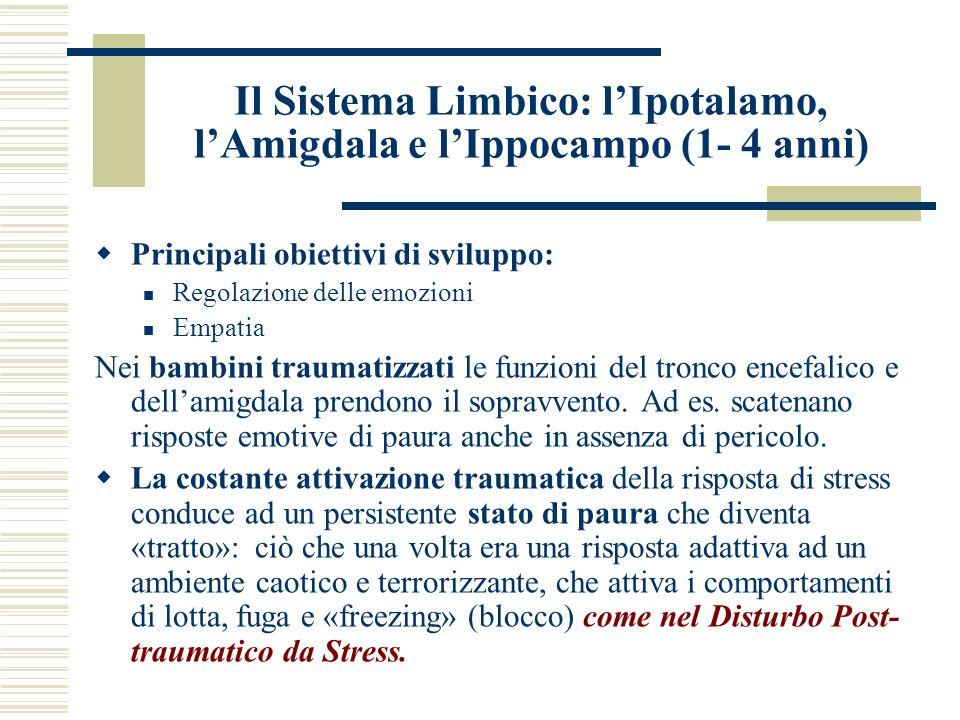 Il Sistema Limbico: lIpotalamo, lAmigdala e lIppocampo (1- 4 anni) Principali obiettivi di sviluppo: Regolazione delle emozioni Empatia Nei bambini tr