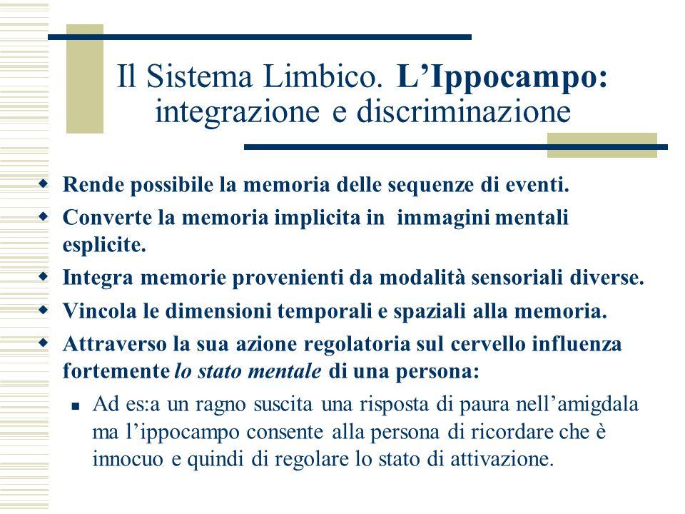 Il Sistema Limbico. LIppocampo: integrazione e discriminazione Rende possibile la memoria delle sequenze di eventi. Converte la memoria implicita in i