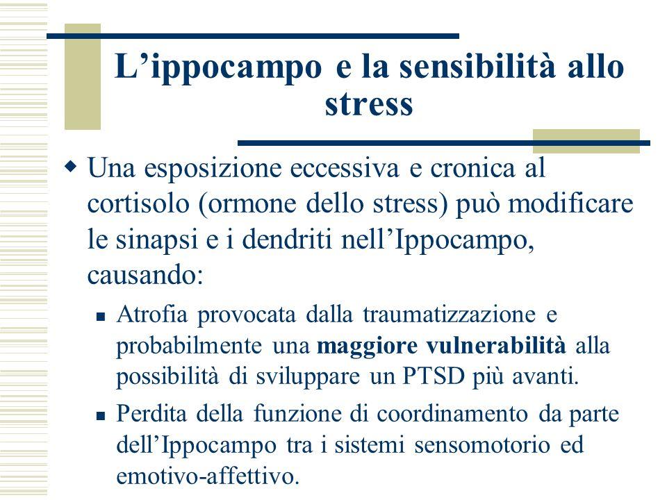 Lippocampo e la sensibilità allo stress Una esposizione eccessiva e cronica al cortisolo (ormone dello stress) può modificare le sinapsi e i dendriti
