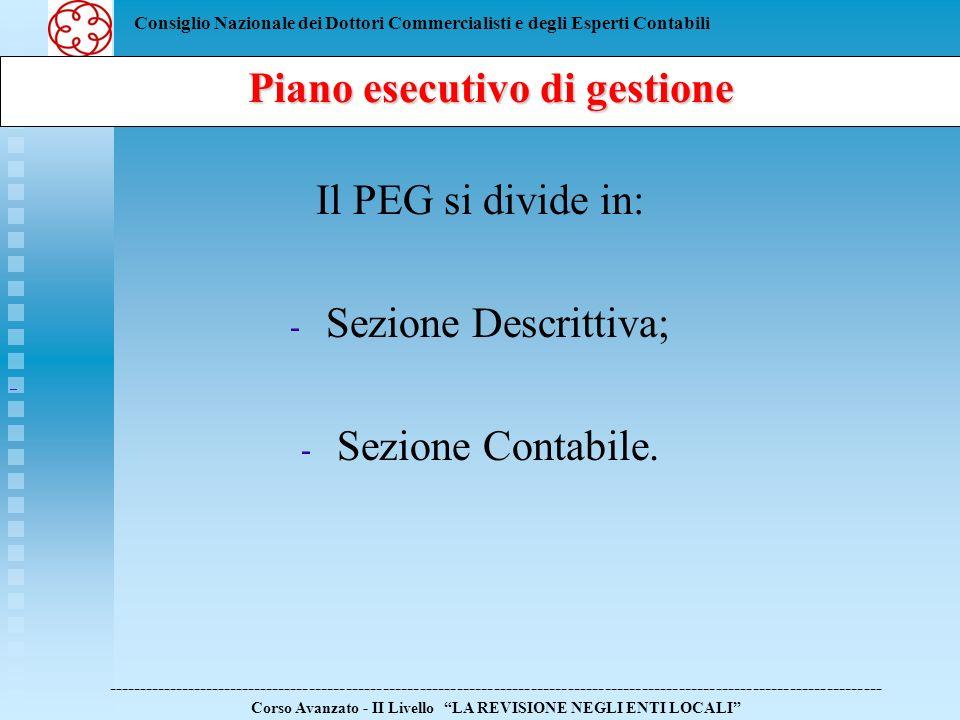 Consiglio Nazionale dei Dottori Commercialisti e degli Esperti Contabili Il PEG si divide in: - - Sezione Descrittiva; - - Sezione Contabile. Piano es