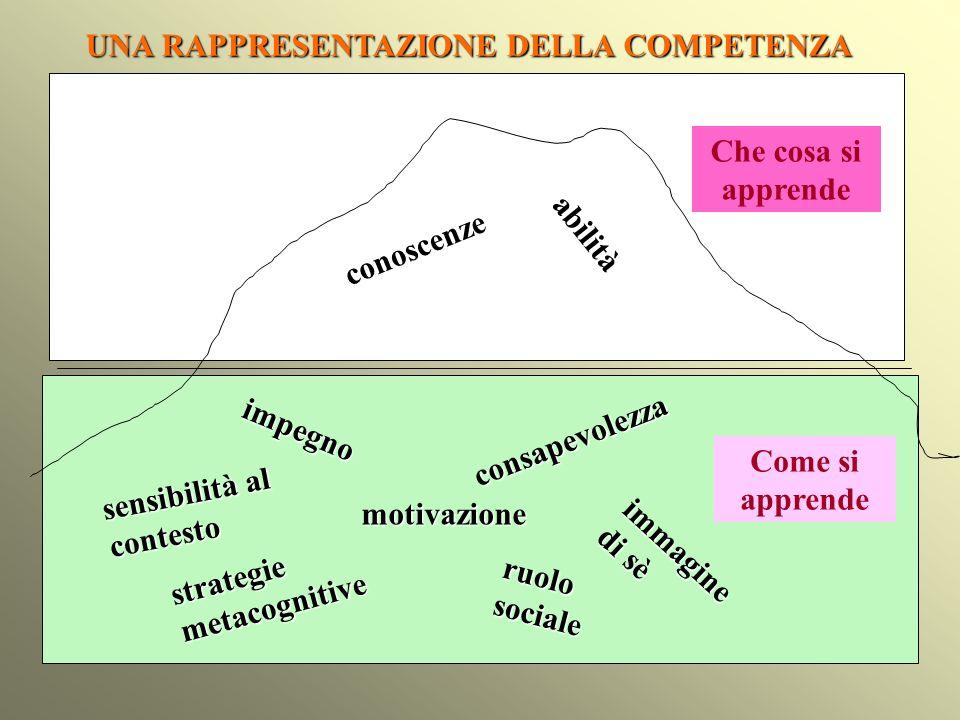conoscenze abilità impegno motivazione strategie metacognitive ruolo sociale immagine di sè consapevolezza sensibilità al contesto UNA RAPPRESENTAZION