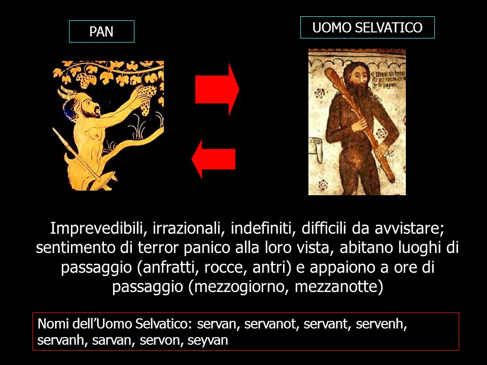 Nomi dellUomo Selvatico: servan, servanot, servant, servenh, servanh, sarvan, servon, seyvan PAN UOMO SELVATICO Imprevedibili, irrazionali, indefiniti