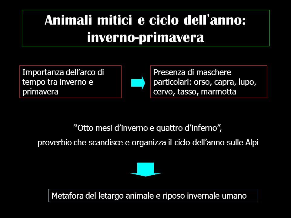 Animali mitici e ciclo dell anno: inverno-primavera Importanza dellarco di tempo tra inverno e primavera Presenza di maschere particolari: orso, capra